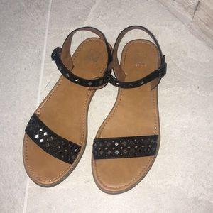 Material Girl Black Flat Sandal